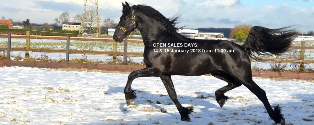 Open sales days