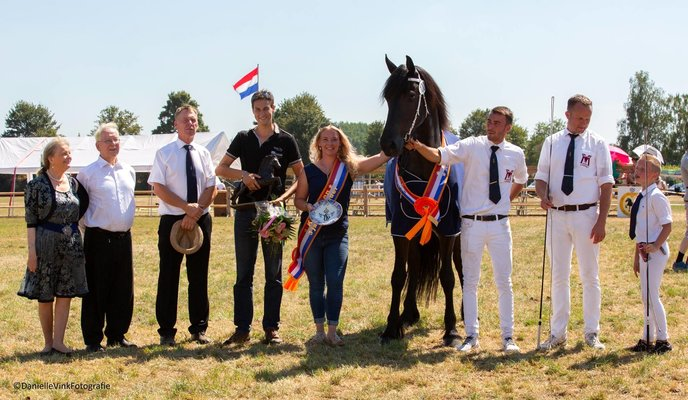 Champion Hilvarenbeek 2018 our own bred mare Zilverschoon