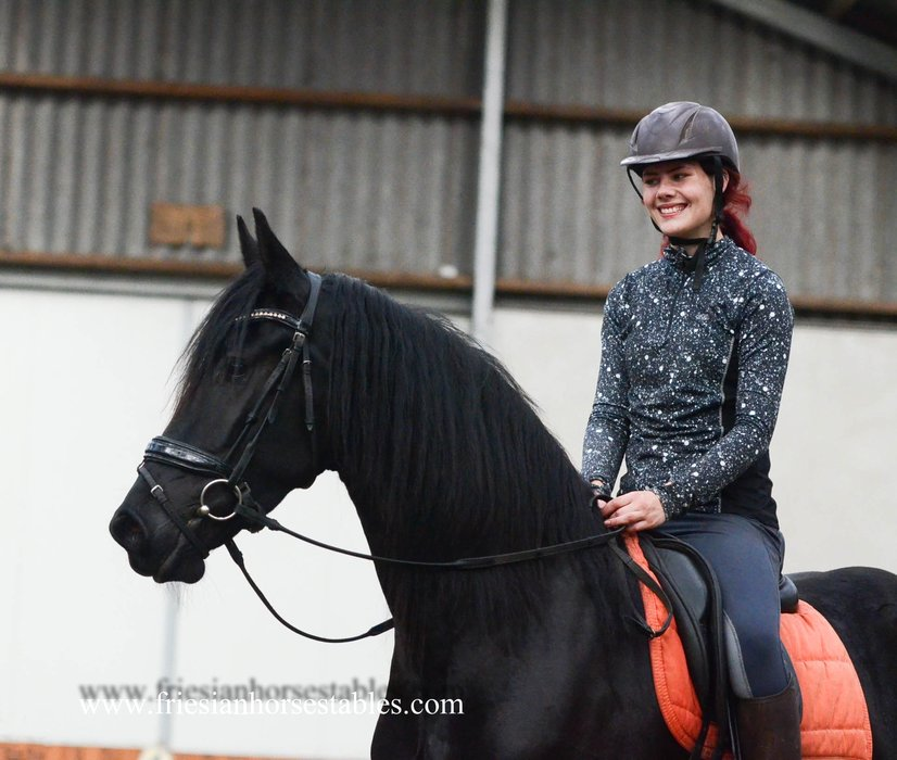 Annamolly is sold to Merit in Holland - Congratulations with this great moving mare!!