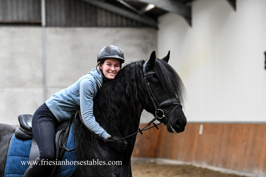 Costa is sold to Diana and Alexander in Germany - Congratulations with this sweet heart!!