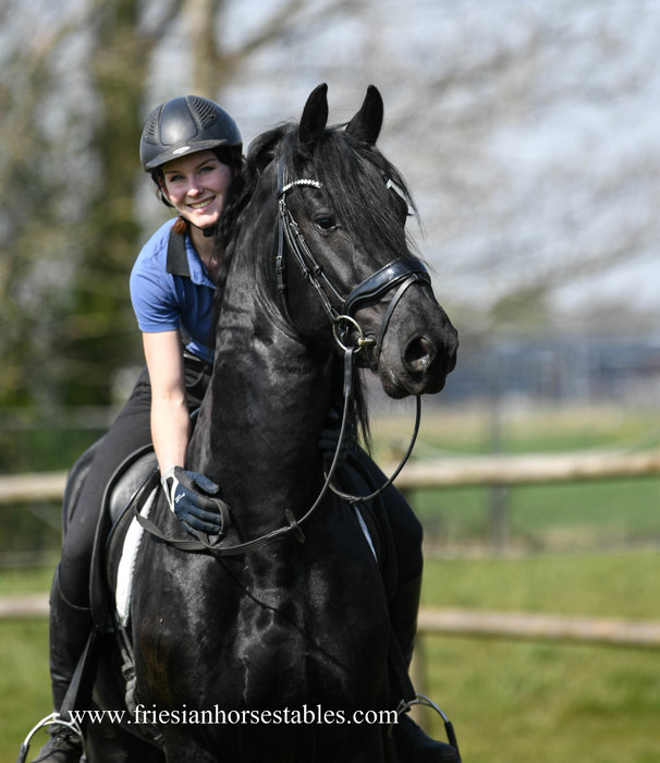 Epke is sold to Dyana in Holland - Congratulations with this Sweetheart!!