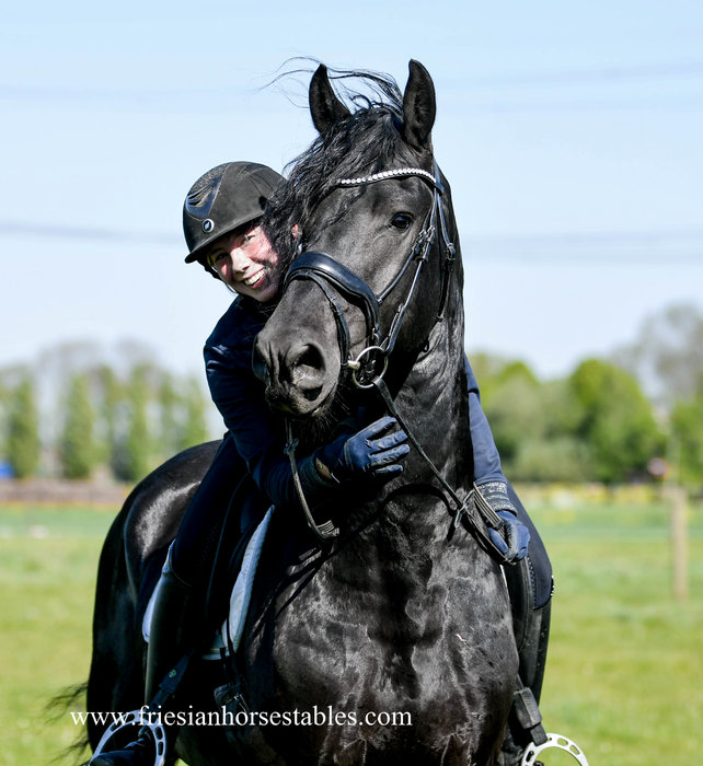 Bûke - Wimer 461 Sport x Hearke 254 Sport+Pref - Talented horse, great use of his front legs!