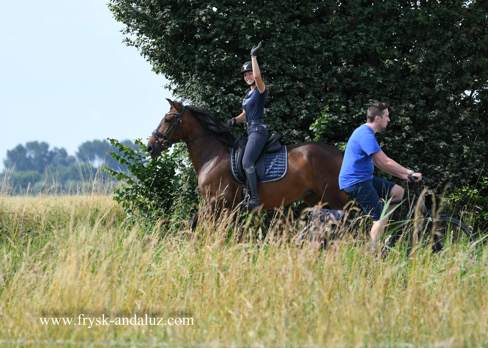 Macarena is sold to Hans in Holland - Congratulations with this love at first sight!!