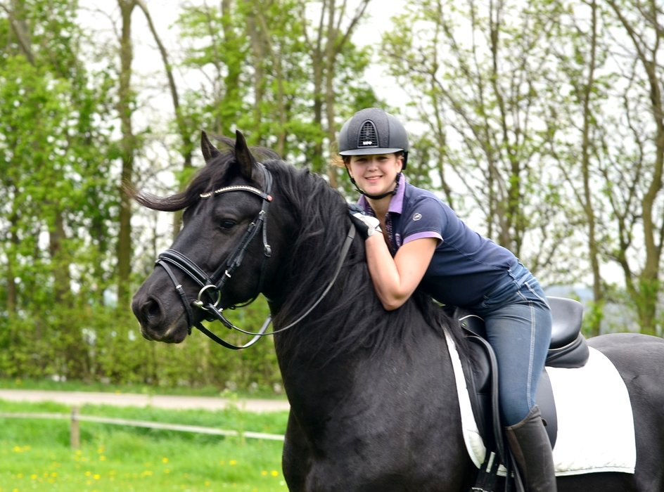 Robin is sold to Emily in Holland - Congratulations with this lovely, sweet horse!!