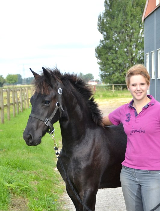 Famke is sold to Monique in Holland - Congratulations with this high quality filly!!