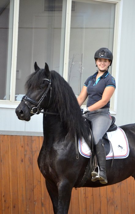 Tsjipke is sold to a lovely family who will educate him further in sports! Congratulations with this nice Ster stallion!