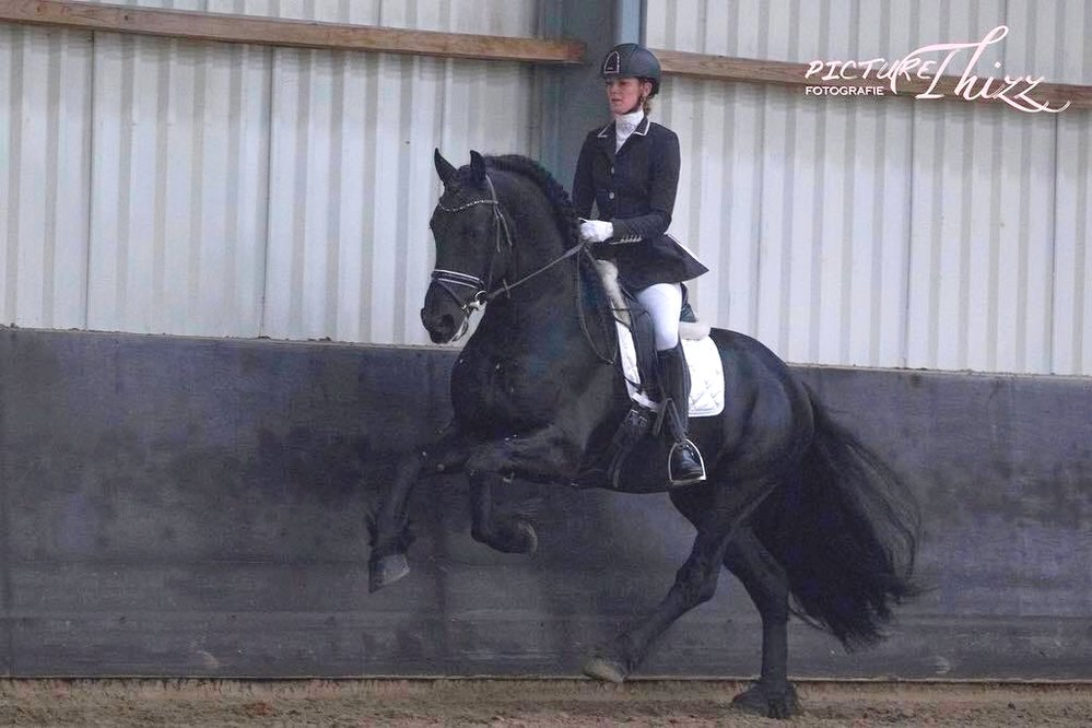 Jobbe is sold to Miss. Meisha in Australia - Congratulations on your 2nd purchase!!
