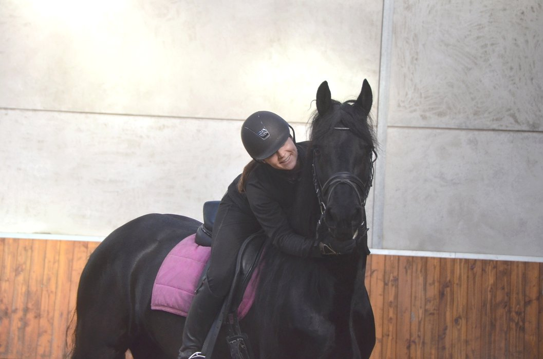 Rigtsje is sold to Miss. Julie in Turkey - Congratulations with this wonderful mare!!