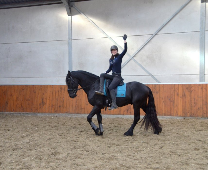 Vester is sold to Donya in Holland - Congratulations with this friend for life-time!!