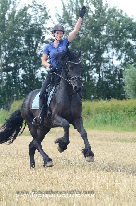Aaike - Aarnold 471 Sport x Tsjalke 397 - 1e premie en kampioensveulen - Toekomstige vriend voor het leven!