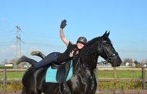 Tillie - Tsjalle 454 Sport x Fetse 349 Sport - Spectacular full papered Ster mare!