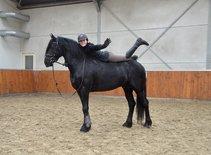Tsjalling - Thorben 466 Sport-Elite x Time 398 - We love this boy!