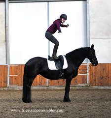 Anouk Jildou is sold to Engeline in Holland - Congratulations with this beautiful mare - You look great together!!