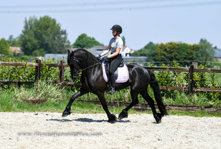 Boukje is sold to Anna-Zara in The Netherlands - Congratulations with this pretty mare!!