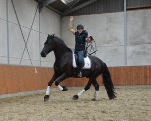 Elroy is sold to a lucky girl Lucrezia in Italia - Congratulations with this sweetheart!!