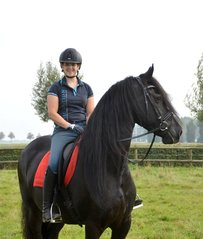 Lieke is sold to a lovely family in Holland - Congratulations with this pretty handsome mare!!