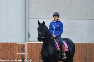 Zyra is sold to a lovely family in Belgium - Congratulations with this sweet and easy going mare!
