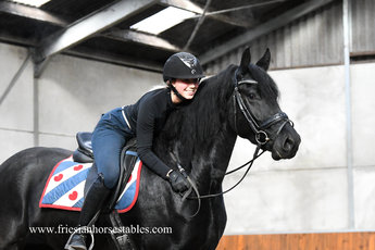 Bijou is sold to Ilse in Holland - Congratulations with this pretty mare - Love at first sight!!