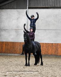 Ulrieke is verkocht aan Nathalie in Nederland - Van harte gefeliciteerd met je droom paard!!