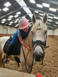 Nita is sold to Linda and Julia in Holland - Mother and daughter - first love - Congratulations with this sweet mare!!