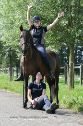 Taranto is sold to Simone in Holland - Congratulations with the sweetest horse from our stable!!