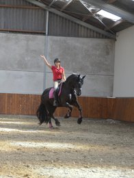 Tiarda is sold to a warm family somewhere in Holland - Congratulations with this promissing mare!!